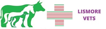 Lismore Vets Logo